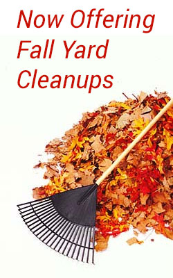 now offering fall yard cleanups